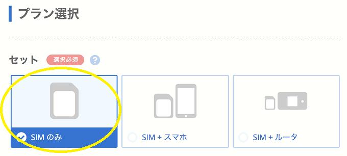 ビッグローブ格安simの選び方
